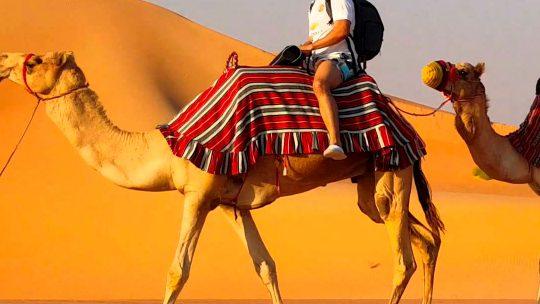 Baixe as artes do post 1 do especial sobre a Tunísia